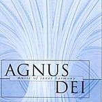 The Choir Of New College, Oxford Agnus Dei: Music Of Inner Harmony