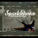 Sparklehorse Good Morning Spider