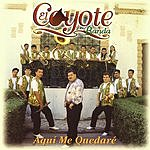 El Coyote Y Su Banda Aqui Me Quedare