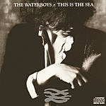 The Waterboys This Is The Sea