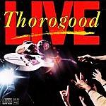 George Thorogood Live