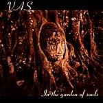 Vas In The Garden Of Souls