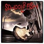 School Of Fish School Of Fish