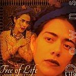 Lila Downs Tree Of Life
