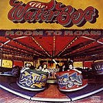 The Waterboys Room To Roam