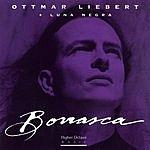 Ottmar Liebert Borrasca
