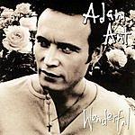 Adam Ant Wonderful