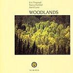 Eric Tingstad Woodlands