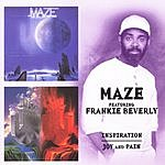 Maze Inspiration/Joy And Pain