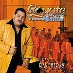 El Coyote Y Su Banda Tierra Santa Puras Rancheras