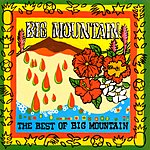 Big Mountain The Best Of Big Mountain