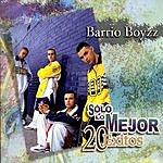 Barrio Boyzz Solo Lo Mejor: 20 Exitos