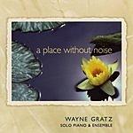 Wayne Gratz A Place Without Noise-Solo Piano & Ensemble