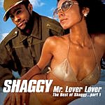 Shaggy Mr. Lover Lover (The Best Of Shaggy, Part 1)