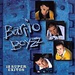Barrio Boyzz 12 Super Exitos