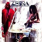 Zebra Zebra - Live