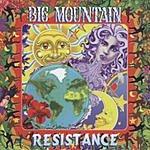 Big Mountain Resistance