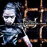 The Union Underground ...An Education In Rebellion (Edited)