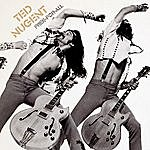 Ted Nugent Free-For-All