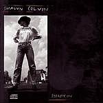 Shawn Colvin Steady On