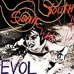 Sonic Youth E.V.O.L.