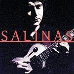 Luis Salinas Salinas