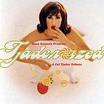 Dave Samuels Dave Samuels Presents Tjader-Ized (A Tribute To Cal Tjader)