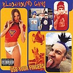 Bloodhound Gang Use Your Fingers (Parental Advisory)