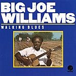 Big Joe Williams Walking Blues (Remastered)