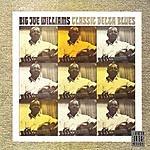 Big Joe Williams Classic Delta Blues (Remastered)