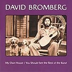 David Bromberg My Own House/You Should See The Rest Of The Band