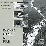 Al Di Meola Passion, Grace & Fire