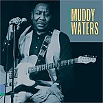 Muddy Waters King Of The Electric Blues