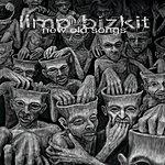 Limp Bizkit New Old Songs (Edited)