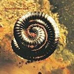 Nine Inch Nails Closer To God (Parental Advisory)