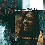 Bob Marley Dreams Of Freedom (Ambient Translation Of Bob Marley In Dub)