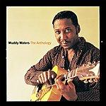 Muddy Waters Anthology (1947-1972)