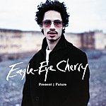 Eagle-Eye Cherry Present/Future