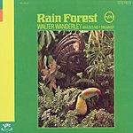 Walter Wanderley Rain Forest (Reissue)