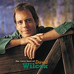 David Wilcox The Very Best Of David Wilcox