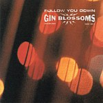 Gin Blossoms Follow You Down