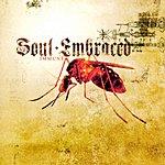 Soul Embraced Immune