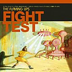 The Flaming Lips Fight Test