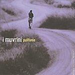 I Muvrini Pulifunie