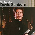 David Sanborn Essentials