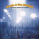 Hootie & The Blowfish I Go Blind/Use Me