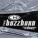 The Buzzhorn Ordinary