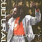 Culture Culture Livity: Live Cluture '98