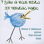 Misha V. Stefanuk Blue Bird In Central Park