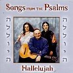Joe Friedman Songs From The Psalms
